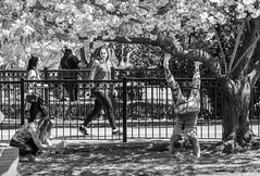 Expressions. (Nance Fleming) Tags: yoga blackandwhite bw exercise fitness glare park cemetery spring bloom