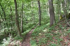 DSC_1817 (gregorv) Tags: slovenia slovenija kum planine mountains mountain nature narava