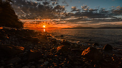 Sunset (Sworldguy) Tags: vancouver beach sunset westcoast ubc rocky waterfront ocean clouds logs seascape warm landscape coastal sunlight wideangle nikon sigma acadiabeach britishcolumbia canada waves water sun skyscape seagull