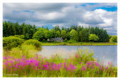 (Stuart Allan38) Tags: nikkor1685 nikond7100 leefilters bigstopper countryside colour colourful water scotland green cottage landscape iamnikon