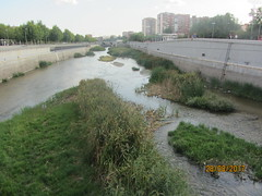 Madrid Rio : a marvel of urban planning!:the regeneration of the Manzanares! (d.kevan) Tags: madrid parksandgardens madridrio rivers plants islets bridges buildings rivermanzanares walls riverbanks people