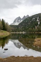 Palpuogna See #1 (FontanaFoto) Tags: albula pas graubünden ansicht palpuogna see bergun switserland albulapas palpuognasee bergünbravuogn zwitserland ch
