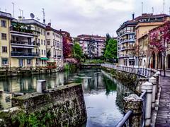 Return to Treviso (AaronP65 - Thnx for over 14 million views) Tags: italy treviso veneto it italia