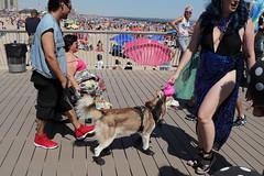IMG_6324 (Brooklyn Cyclist) Tags: coneyisland mermaidparade 2018 brooklyn canonm50 18150lens broghton boardwalk lunapark neptuneave