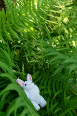 Summer Shade (Arielle.Nadel) Tags: mia rabbit summer shade miarabbit bunny cute toyphotography