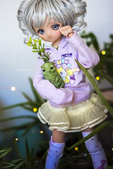 """""""I would've been Lost for So Long without You"""" (Koala Krash) Tags: mdd volks dollfiedream minidollfiedream dd dollfie dream mini tan cute koalakrash"""