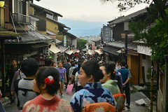 DSC_0044 (sxcxxhx) Tags: japan osaka kyoto hydrangea flower trip voyage 日本 大阪 京都 旅行