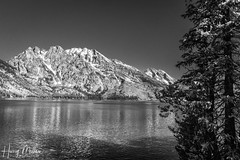 Jenny Lake & the Tetons (HarryMiller002) Tags: blackwhite lake mountain grandtetonnationalpark tetons grandteton wyoming landscape hike hiking monochrome