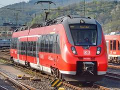 Baureihe 442 (Talent) (sander_sloots) Tags: baureihe442 bombardier train trein koblenz hauptbahnhof talent zug openbaar vervoer public transport deutsche bahn