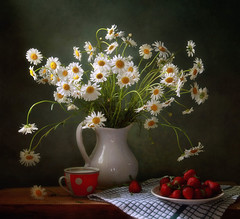 Still life with daisies and strawberries (Tatyana Skorokhod) Tags: stilllife bouquet flowers chamomile berries strawberry decor indoors