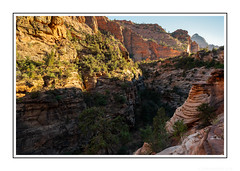 The Inexorable Power of Canyon Carving (JohnKuriyan) Tags: utah virginriver zioncanyonnationalpark