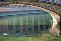 Spanish Tile decorated Bridge (sharon.verkuilen) Tags: spain seville andalusia plazadeespana parquedemarialuisa sonya7rii spanishtile bridge water