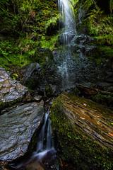 Mallyan Spout (Dean Conley) Tags: mallyanspout goathland northyorkshiremoors heartbeat northeastengland nikond7200 d7200 tokina1120mmf28 wideangle dslr beauty nature rock green trees