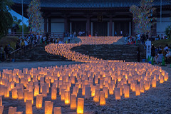 Candle Night at Zojoji temple (703) Tags: candlenight japan pentaxk3ii starfestival summerfestival tanabata tokyo zojoji cityscape festival night nightscape nightscene nightview temple たなばた キャンドルナイト 七夕祭り 増上寺 夜景 日本 東京