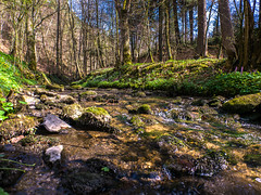 Frühling im Schwalbtal (Tobias Keller) Tags: bach bavaria bayern deutschland donauries frühling germany gewässer gosheim heimat huisheim landschaft schwaben schwalb schwalbtal swabia wasser water weitwinkel weitwinkelkonverter home landscape stream geo:lat=48845034902963 geocountry camera:make=panasonic exif:isospeed=160 geostate geocity geolocation exif:focallength=14mm camera:model=dmcg5 geo:lon=10733605270868 exif:lens=lumixg14f25 exif:aperture=ƒ40 exif:model=dmcg5 exif:make=panasonic lumixg14f25 panasonicdmcg5