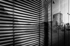 From lying to standing (maciej_urbanowicz) Tags: poland polska streetphoto streetphotography warsaw warszawa architecture summer weekend pl nikon d750 samyang samyanglens 14mm uwa art artistic reflection mirror wideangle