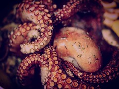 15418414_10154793963441950_8061723167771870789_o (Ashly Edwards Huntington) Tags: cooking healthy food foodporn tasty yummy octopus seafood texture