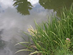 Allerton Park (Gabrielle Gaia) Tags: allertonpark monticello illinois il park garden summer pond water