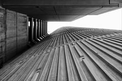 melbourne-1007-ps-w (pw-pix) Tags: building architecture texture concrete ribs ribbed corrugated lines vertical windows lined lookingup sky bw blackandwhite monochrome spencerstreet yarrariver northwharf crowneplaza crowneplazahotel melbourne victoria australia peterwilliams pwpix wwwpwpixstudio pwpixstudio