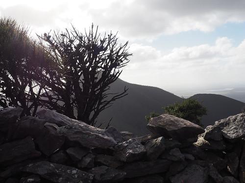 Birthday Walk XVI – Mt Talyuberlup, Stirling Ranges, Western Australia