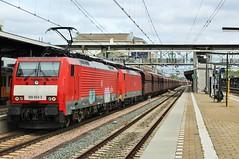 DBC 189053 + 189039 te Dordrecht (erwin66101) Tags: ns dbc db cargo station falns deutsche bahn deutschebahn locomotief goederentrein goederen trein dordrecht zwijndrecht