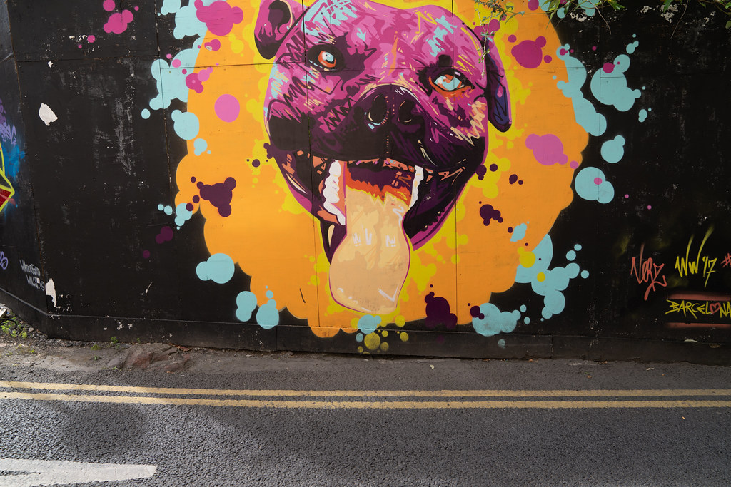 EXAMPLES OF STREET ART [URBAN CULTURE IN WATERFORD CITY]-142289