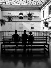 ... Tabakalera 2018 ... (Lanpernas .) Tags: tabakalera donostia sansebastián 3 impar byn candid patio sombras contraluz cameraphone
