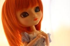 Stay Gold (Dolls-and-Tea) Tags: pullip bnp brand new purezza rewigged obitsu jpopdolls monique aquel stock outfit