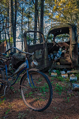 Handing Off The Hearts (Wayne Stadler Photography) Tags: georgia preserved retro abandoned classic rustography automotive overgrown vehiclesrust rusty junkyard vintage oldcarcity rustographer derelict white