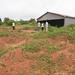 USAID_PRADD II_Cote D'Ivoire_2014-51.jpg