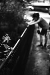 Photographer with helmet (Leica M6) (stefankamert) Tags: stefankamert street photographer helmet plant noir blackandwhite blackwhite leica leicam6 m6 rangefinder summicron dr dualrange rollei retro 400s film analog grain bokeh blur blurry noiretblanc bridge people
