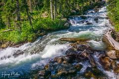 Cascade Creek (HarryMiller002) Tags: creek cascadecreek grandteton wyoming landscape river stream