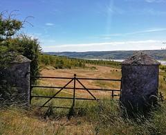 On beautiful Islandmagee. (i-lenticularis) Tags: islandmagee countyantrim northernireland ireland ruralscene farming farmgate gatepillar