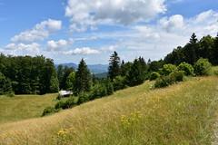 DSC_1920 (gregorv) Tags: slovenia slovenija kum planine mountains mountain nature narava