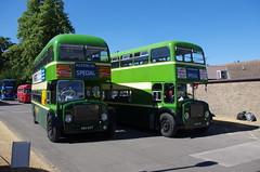 IMGP2165 (Steve Guess) Tags: ansteypark alton hampshire hants england gb uk bus rally show aldershot district dennis loline iii 488kot 462eot