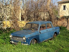 Fiat 1100 R (Alessio3373) Tags: rottame relitto relics abandoned abandonment abandonedcars autoabbandonate unused unloved neglected forgotten forgottencars junk junkcars scrap scrapped scrappedcars rust rusty rustycars rusted fiat fiat1100r fiat1100