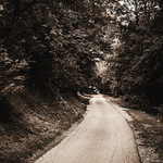 Old Forest Road thumbnail