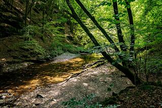 hiking the baybach gorge