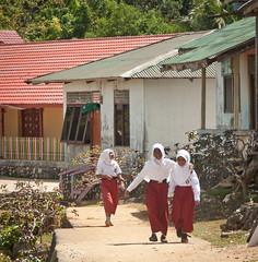 DSC_0384 (yakovina) Tags: silverseaexpeditions indonesia den weg island papua new guinea