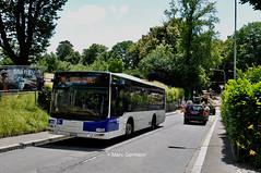 Autobus MAN Lion's City n°313 en service sur la ligne 16. © Marc Germann (Marc Germann) Tags: lions city bus remorques convois retrobus tl lausanne nawhess man par brise routes trolleybus transport transportspublics hesskièpe nawhesssiemens arbres sbb cff ffs