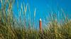 De Groote Kaap, Julianadorp (Ramireziblog) Tags: de groote kaap vuurtoren julianadorp zanddijk rood staal noordzeekust lighthouse zee lichtbaken koegras helmgras dunes duinen dutch mountains landscape landschap canon 6d