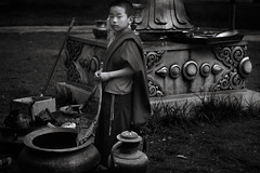 Monk Boy (Ravikumar Jambunathan) Tags: ancient belief culture custom history holy india life light sikkim tradition travel temple man boy monastery buddhism prayer ravikumarjambunathan portrait boys study