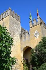 Castillo de Almodóvar del Río (Andalucía, España, 13-6-2018) (Juanje Orío) Tags: 2018 almodóvardelrío provinciadecórdoba andalucía españa espagne espanha espanya spain biendeinteréscultural castillo castle bandera flag