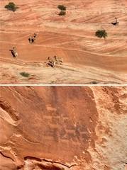 Reality TV, Indian style (Chief Bwana) Tags: az arizona pariaplateau navajosandstone vermilioncliffs bighornsheep petroglyph wildlife psa104 chiefbwana