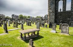 Saint Andrew, Scotland (pdorta) Tags: catedral standrews cementerio cathedral escocia scotland