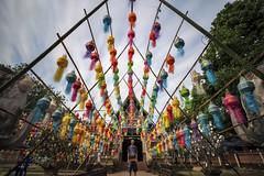 Hall of Lanterns (Matt Molloy) Tags: mattmolloy photography timestack photostack watlokmoli watlokmolee buddhist temple colourful lanterns bright vibrant decorations loikrathong festival art elephants sculpture me myself religion chiangmai thailand lovelife