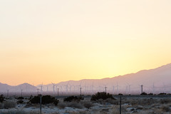 _U7A1233 (Eric.Burniche) Tags: palmsprings joshuatree nationalparks desert nationalpark joshuatreenational california