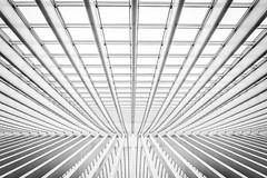 Streben (YaYapas) Tags: rx10 santiagocalatrava monochrome roof architecture dach bahnhof blackandwhite station schwarzweiss luik waalsgewest belgien be liègeguillemins lüttich