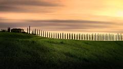 Poggio Covili. (Massetti Fabrizio) Tags: sunrise sun sunlight sunset sanquirico siena landscape landscapes light tuscany toscana tree phaseone pienza panorami iq180 italia italy rodenstock red rosso rural fabriziomassetti famasse poggiocovilli poggio farmhouse
