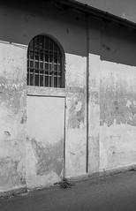 20180623_004_JPEG FULL (Domenico Cichetti) Tags: olympustrip35 blackwhite blackandwhite bw bustoarsizio bn selfdevelop selfdevelope argentique analogicait analogico kentmere100 olympus studional